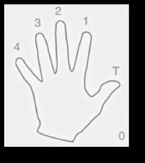 Placement des doigts en guitare